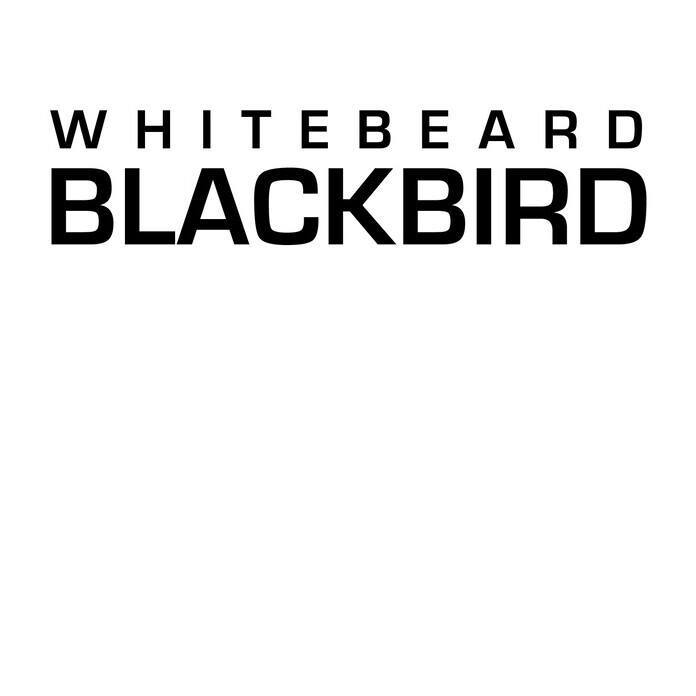 Кафе «Whitebeard Blackbird»