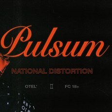 Вечірка «National Distortion: Pulsum»